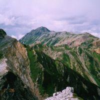 思い出の山旅ー7.北ア・裏銀座コースを高山植物を愛でながらテント泊で歩く