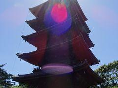 東寺で仏像三昧