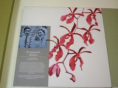 社員旅行でシンガポールへ (4) 定番の蘭園へ・・・そこには皇太子ご夫妻(現天皇ご夫妻)が記念植樹された蘭が、そしてリスを見っけ!!