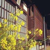 愛媛旅行② 内子町ぶらぶら~石畳の宿~四国カルストへドライブ