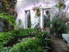 夏の優雅な南イタリア周遊旅行♪ Vol292(第16日) ☆Isola d'Ischia/Forio:美しい植物園「Giardini La Mortella」 「Tempio del sale」妖艶な熱帯温室♪
