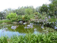 夏の優雅な南イタリア周遊旅行♪ Vol293(第16日) ☆Isola d'Ischia/Forio:美しい植物園「Giardini La Mortella」 「Cascata del Coccodrillo」美しい池と花の競演♪