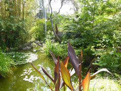 夏の優雅な南イタリア周遊旅行♪ Vol294(第16日) ☆Isola d'Ischia/Forio:美しい植物園「Giardini La Mortella」 「Cascata del Coccodrillo」驚きのアジアンチックな庭園も♪