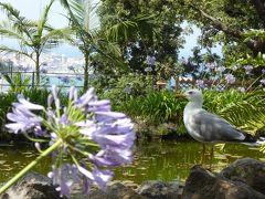 夏の優雅な南イタリア周遊旅行♪ Vol298(第16日) ☆Isola d'Ischia/Forio:美しい植物園「Giardini La Mortella」 「Rocchia di William e Giardino delle Aloe」美しいサボテンの競演♪