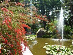 夏の優雅な南イタリア周遊旅行♪ Vol299(第16日) ☆Isola d'Ischia/Forio:美しい植物園「Giardini La Mortella」 賑やかな鳥小屋と優雅なカフェ♪