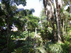 夏の優雅な南イタリア周遊旅行♪ Vol300(第16日) ☆Isola d'Ischia/Forio:美しい植物園「Giardini La Mortella」 「Fontana grande」を再び眺めて♪