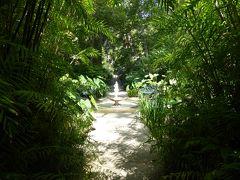 夏の優雅な南イタリア周遊旅行♪ Vol301(第16日) ☆Isola d'Ischia/Forio:美しい植物園「Giardini La Mortella」 これで観光は終了♪