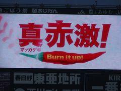 今年の広島は熱い!25年ぶりの優勝へカウントダウンが始まった♪ ~広島カープVS横浜DeNA~in MAZDAスタジアム