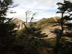 信州の旅(車山をドライブ・諏訪湖畔に泊まって北八ヶ岳に登る)