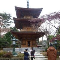 東京さんぽ 2011/12/22-2012/01/13