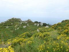 夏の優雅な南イタリア周遊旅行♪ Vol323(第17日) ☆Isola d'Ischia/Fontana:Bocca di Serraからセッラーラへハイキング♪咲き乱れる花に囲まれて♪