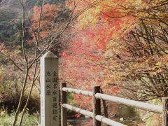 阿蘇で秋を楽しむ温泉と水の旅