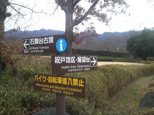 娘が関西空港から香港に行きたいというので、ついでに青春時代を過ごした奈良で古い友人たちにも会いに行こうと考え、予定を合わせて娘を関空まで送迎することにしました。<br /><br />手に汗にぎる娘の出国は<br />『関空送迎と奈良観光 (その1) 泉佐野までの記録更新』<br />に書きました。<br />http://4travel.jp/travelogue/11170234<br /><br />スリルとサスペンスのドラマがあって、無事に娘を国外に送り出したところからの一人旅。<br /><br />10代なかば、奈良に住んでいた時は集団行動をしていたのであまり観光をしていません。<br />多少はあちこち行きましたけどね。<br /><br />今回は、住んでいた時には行ったことが無かった斑鳩と、明日香村や、橿原に出かけました。<br />通ったことはあるんですけどね・・・。