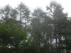 秋キャンプは涼しい・・・スモークの煙、今度こそ出せるか