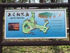 2016 あくね大島 鹿と遊ぼう!!