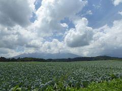 夏の優雅な浅間高原バカンス♪ Vol2 ☆嬬恋村:夏の美しいキャベツ畑♪