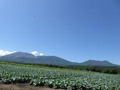 夏の優雅な浅間高原バカンス♪ Vol17 ☆嬬恋村:夏の美しいキャベツ畑と浅間山♪