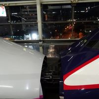 仙台からの東北新幹線?仙台のお弁当と新幹線の連結見学?