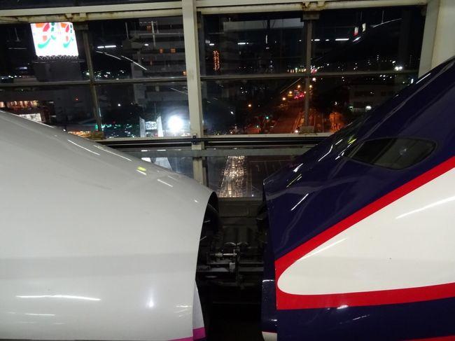 仙台から首都圏に帰るのに新幹線を使いました。<br />仙台の駅は駅弁が充実。<br />駅弁を買って車内で食べました。<br />途中の福島駅で珍しい新幹線同士の連結が見れました。