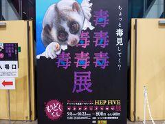 2016年 9月 大阪府 HEP HALL 毒毒毒毒毒毒毒毒毒展(もうどく展)