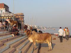 初めてのインド一人旅、ガンガ−のガ−トを端から端まで歩いて雰囲気を味わいました。