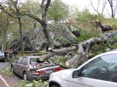 ハリケーン・サンディでNYに閉じ込められた2012年10月