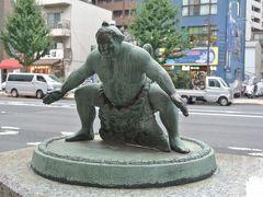 東京ぶらり散歩 ☆どすこいっ!両国 。ちゃんこランチ、パワースポットの回向院、勝海舟生誕の地、江戸東京博物館など☆