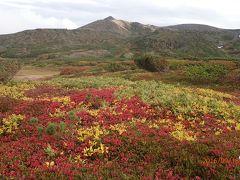 【山行記録13】日本一早い紅葉を求めて大雪山旭岳・黒岳に登る。