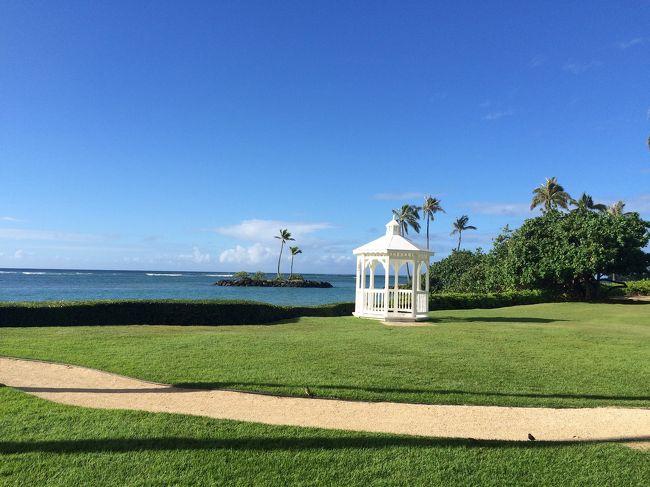 母親の還暦お祝いで、母娘でハワイに行ってきました。ほぼ初海外の母との旅行、自身は10年振り、二度目のハワイです。これから渡航される方の参考になれば幸いです。
