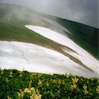 思い出の山旅ー12.飯豊連峰縦走・素晴らしいお花畑と残雪