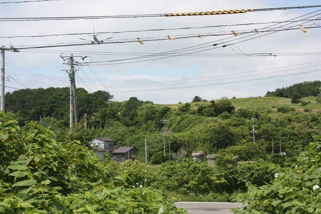 2016年の夏休み、「はこだて旅するパスポート」や「ぐらんぶる・しりべしフリーきっぷ」を利用して、道南を回ってきました。<br />旅の目的は、<br /> ?道南の廃線跡を巡る。<br /> ?北海道新幹線に乗る。<br /> ?神威岬に行く。<br /> ?道南に面した海の沿岸をバスで走破する。<br /> ?函館本線砂原支線に乗る。<br /> ?新日本海フェリーに乗る。<br />でした。<br />その12は、戸井線廃線跡巡り・汐泊川橋梁編です。<br /><br />その1 出発・北海道新幹線初乗車編http://4travel.jp/travelogue/11157741<br />その2 瀬棚線廃線跡巡り・今金編http://4travel.jp/travelogue/11157784<br />その3 瀬棚線廃線跡巡り・北檜山・瀬棚編http://4travel.jp/travelogue/11157959<br />その4 北檜山~江差間バス乗車と江差線廃線跡巡り・江差編http://4travel.jp/travelogue/11158111<br />その5 江差~松前バス乗車と松前線廃線跡巡り・松前編http://4travel.jp/travelogue/11159443<br />その6 松前城と松前線廃線跡巡り・橋脚・橋台編http://4travel.jp/travelogue/11159782<br />その7 松前~木古内バス乗車と木古内編http://4travel.jp/travelogue/11159864<br />その8 道南いさりび鉄道乗車編http://4travel.jp/travelogue/11160377<br />その9 亀田半島バス乗車と戸井線廃線跡巡り・アーチ橋編http://4travel.jp/travelogue/11160482<br />その10 続・亀田半島バス乗車編http://4travel.jp/travelogue/11163170<br />その11 函館本線砂原支線乗車編http://4travel.jp/travelogue/11171875