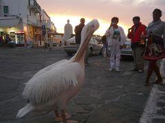 MSCムジカ号でエーゲ海クルーズ5  夜のミコノスタウンは迷路の世界
