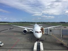 JAL407便・成田発フランクフルト行 今までで一番満足なエコノミー