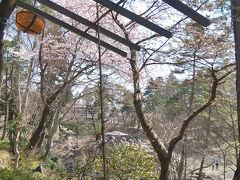 厳美渓の紅葉はまだまだでした