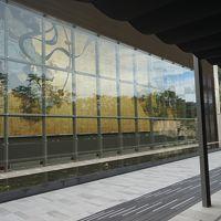 岡田美術館 ―生誕300年を祝う―若冲と蕪村 江戸時代の画家たち
