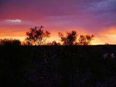 絶景大陸オーストラリア エアーズロック&シドニー⑤ ウルルからシドニーへ シャングリラホテルシドニー