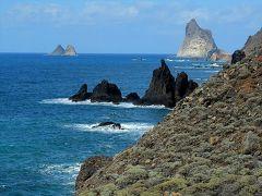 ★カナリア諸島(12)テネリフェ島 北部のアナガ自然保護地区、そしてサン・クリストバル・デ・ラ・ラグーナへ