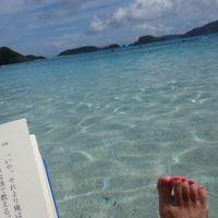 16年10月 シュノーケル@慶良間諸島 座間味島編