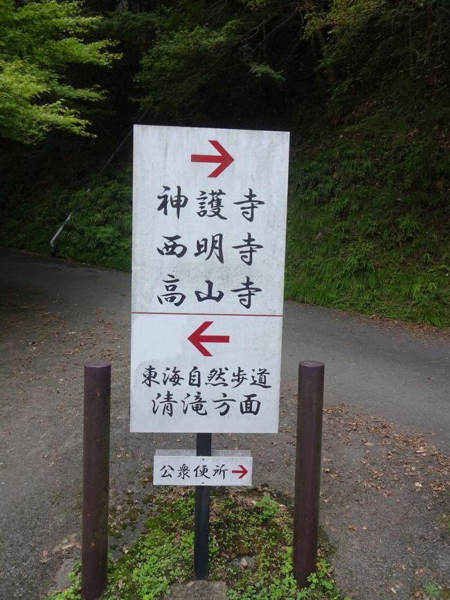 東海自然歩道の一部でもある、京都トレイル清滝ハイキングに出発です。東海自然歩道は、八王子と大阪・箕面を結ぶ1都8県2府に及ぶ全長1697.2kmの自然歩道で、整備されたハイキングコースになっています。