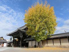 京都('15 紅葉狩り)