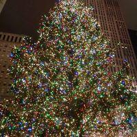 クリスマスシーズンのニューヨーク訪問