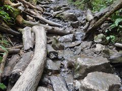 高尾山健康登山(9) 6号路ー高尾山ー1号路-琵琶滝ー高尾山温泉