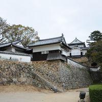 天守閣が現存する備中松山城と高梁の街並み散歩