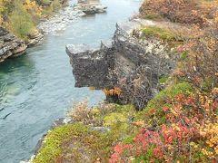 随一の紅葉名所、アビスコ川下流域