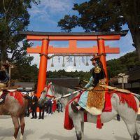 馬肥ゆる秋 上賀茂神社を馬駆ける!