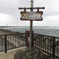 稚内のノシャップ岬に立つ