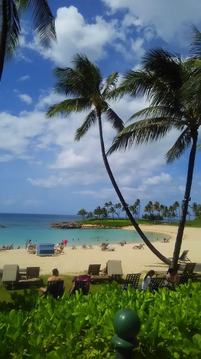 パートナーのお姉さん夫婦のおかげでアメリカハワイに訪れることができました。
