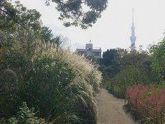 スカイツリーの足元を散歩/長命寺・向島百科園と鳩の街