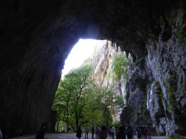 ブレッド城を後にして、世界遺産の鍾乳洞シュコツィアンに向かいます。鍾乳洞内部は撮影禁止。写真でご覧に入れられなくて本当に残念です(>_<)