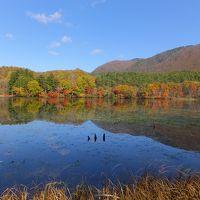 ワンコと一緒旅2016☆紅葉の羽鳥湖高原レジーナの森へ♪2日目